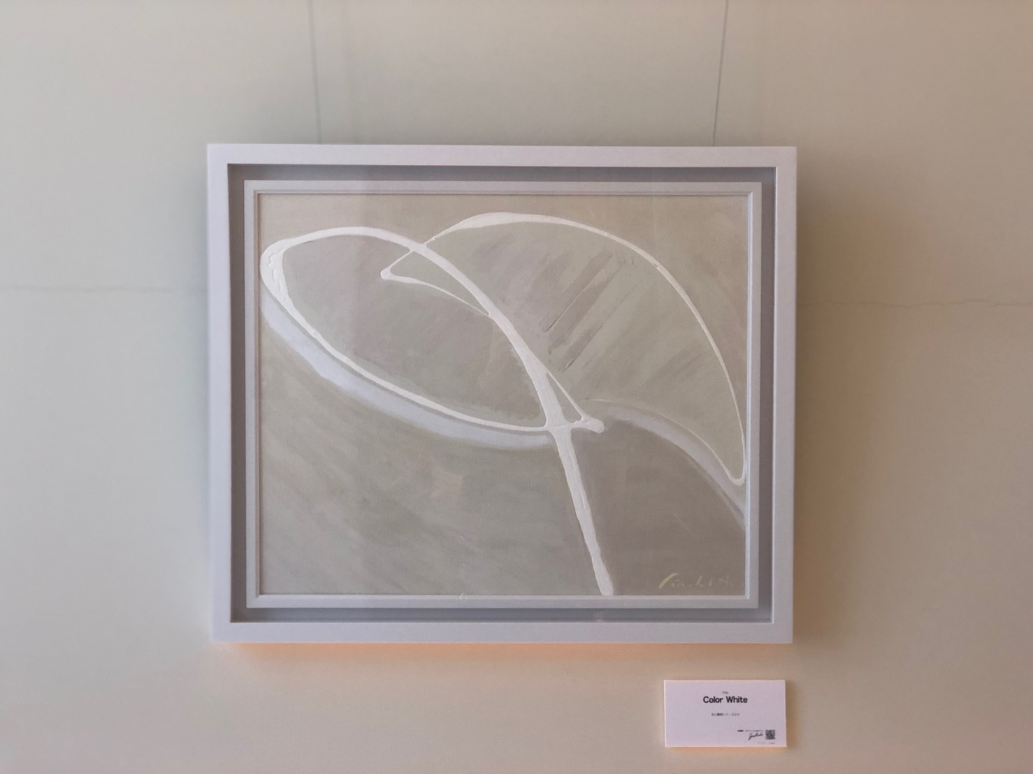 Color White  -  53cm × 45.5cm